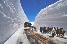 Snow Wall Walk(Yuki-no-Otani Walk) 2015 Photo