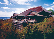 Feel the culture of Kiyomizu-dera Temple and Kyoto's cobbled-stone streets Thumbnail Image