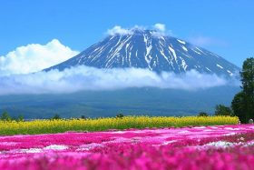 Mt. YoteiPhoto