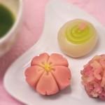 Kyogashi (Confectionery)