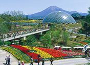 日本屈指の高原リゾート大山の春を満喫サムネイルイメージ