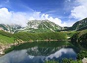 高さ20mの雪の壁!日本屈指の山岳ルート 「立山黒部アルペンルート」で大自然を満喫!サムネイルイメージ