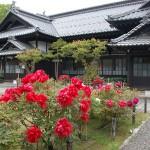Shukutsu Photo