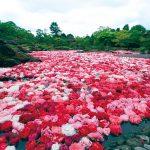 Yuushien Garden Photo